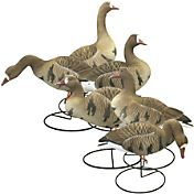 Hard Core Full Body Specklebelly Goose Touchdown Decoys – 6 Pack